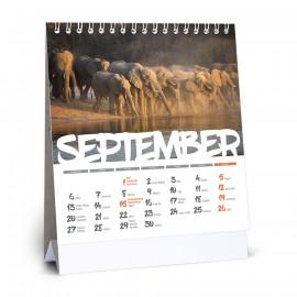 Stolový kalendár 150x160mm...